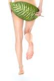женщина ног s Стоковые Фото