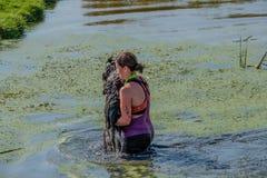Женщина носит ее маленькую собаку через воду стоковые фотографии rf