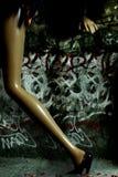 женщина ночи Стоковая Фотография