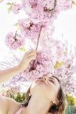 Женщина обнюхивает ветвь Сакуры стоковые изображения