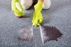 Женщина обтирая пятна на ковре с бутылкой брызга стоковое изображение rf