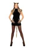 Женщина одетая как кот. Изолировано стоковые фотографии rf