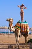 женщина океана верблюда предпосылки стоящая Стоковые Фото