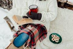 Женщина ослабляя на зимний день Стоковое Изображение RF