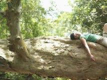 Женщина отдыхая на ветви дерева в лесе Стоковые Изображения RF