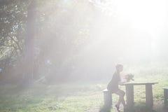 женщина парка осени красивейшая Стоковая Фотография RF