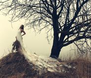 женщина платья белая Стоковые Изображения