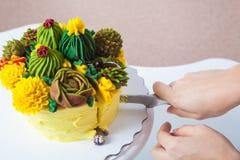 Женщина подготавливает торт Стоковые Изображения RF