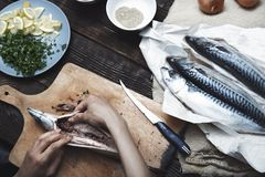 Женщина подготавливая рыб скумбрии Стоковое Фото