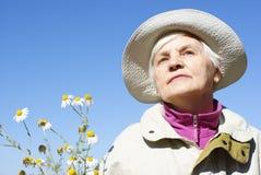 женщина пожилых людей маргариток Стоковые Фотографии RF