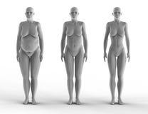 Женщина потери веса Стоковое Изображение