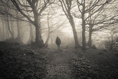 Женщина потерянная в темном лесе Стоковая Фотография