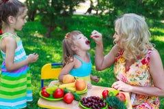 Женщина подавая ее дети Стоковое Изображение RF
