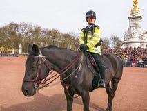 Женщина-полицейский ЛОНДОНА верхом на Букингемском дворце стоковые фотографии rf