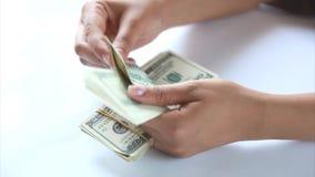 Женщина подсчитывая видео денег акции видеоматериалы