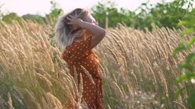 Женщина привлекательного hippie потехи белокурая в поле на заходе солнца имея полезного время работы outdoors движение медленное  сток-видео
