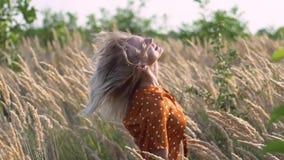 Женщина привлекательного hippie потехи белокурая в поле на заходе солнца имея полезного время работы outdoors движение медленное  акции видеоматериалы