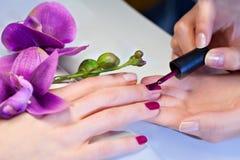 Женщина прикладывая лак для ногтей к ногтям пальца Стоковые Изображения