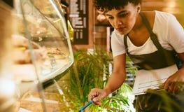 Женщина проверяя запас в ее кафе стоковые фотографии rf