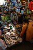 Женщина продавая рыб в Siem Reap Стоковая Фотография RF