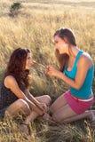 женщина пшеницы поля говоря Стоковое фото RF