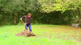 Женщина работает с грабл над чисткой упаденных листьев сток-видео