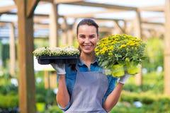 Женщина работая в садовом центре стоковые изображения rf