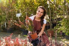 Женщина работая в садовом центре стоковые изображения