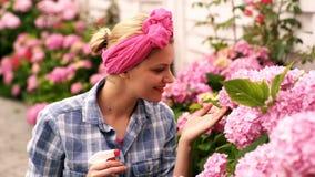 Женщина распыляет розовые цветки Женщина заботит для цветков Весна и лето Цветки парника Женщина наслаждается цвести  сток-видео