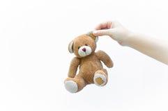 Женщина руки держа игрушку плюшевого медвежонка уха коричневую на белизне Стоковая Фотография