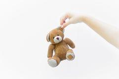 Женщина руки держа игрушку плюшевого медвежонка уха коричневую на белизне Стоковые Изображения