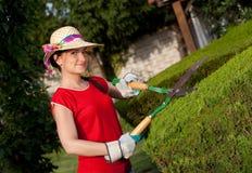 женщина садовника Стоковые Фотографии RF