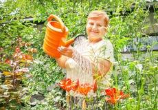 Женщина садовника активная старшая пожилая мочит цветки в Стоковое Изображение RF