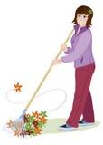 Женщина сгребает листья Стоковое Изображение RF