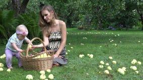 Женщина сельчанина в платье и ее яблоки одной годовалые рудоразборки дочери младенца к плетеной корзине 4K акции видеоматериалы
