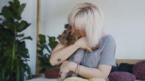 Женщина, сидя на софе в спальне, играет с йоркширским терьером маленькой собаки Счастливая девушка играя с немногим акции видеоматериалы