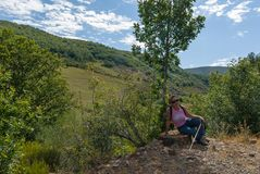 Женщина сидя с ее собакой на медном маршруте источника Природный парк Fuentes de Carrionas Испания стоковые фотографии rf
