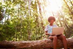 Женщина сидит на стволе дерева в лесе используя портативный компьютер Стоковое фото RF