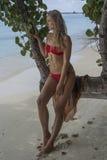 Женщина сидя на дереве Стоковые Изображения RF