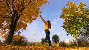 Женщина смотря на падая кленовых листах, замедленное движение акции видеоматериалы