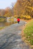 женщина собаки гуляя Стоковые Изображения RF