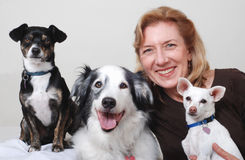 женщина собак 3 Стоковые Фотографии RF