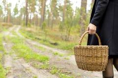 Женщина собирая грибы в темном мирном лесе, избежании от города, сборе гриба Стоковые Изображения