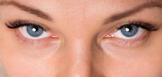 Женщина стороны с глазами и ресницами Стоковые Изображения