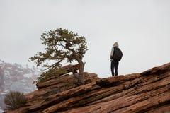 Женщина стоя на этап бдительности около выдержанного дерева в национальном парке Юте Сиона с западным виском в расстоянии Стоковое фото RF