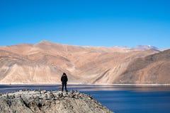 Женщина стоя перед озером Pangong с Mountain View и голубым небом Стоковое Изображение RF