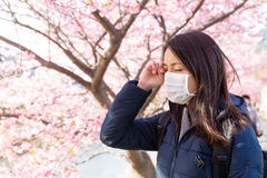 Женщина страдает от аллергии цветня под деревом Сакуры Стоковое фото RF
