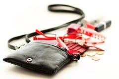 женщина сумки Стоковые Фото