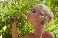 Женщина с апельсиновым соком на тропическом курортном отеле Стоковая Фотография RF