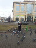 Женщина с голубями Стоковые Фотографии RF
